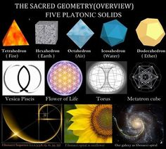 Sacred Geometry Overview:: Five Platonic Solids. A review of the fundamentals of sacred geometry.. . Platonic Solids • Flower of Life • Fibonacci Number • Torus • Metatron's Cube • Nassim Haramein • The Connected Universe.. .