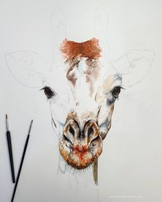 New work in progress for the new collection 🦒 x on cotton watercolour paper I'm obsessed with him already. Chloe Brown, Contemporary Artwork, Pet Portraits, Watercolor Paper, New Work, Original Artwork, Moose Art, Prints, Cotton