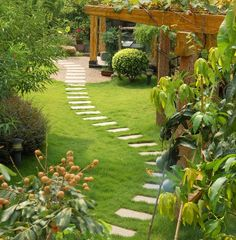 I wish this was my back yard