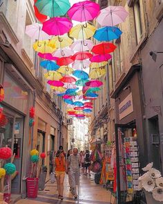Avignon ,France