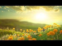 Morning Relaxing Music - Positive Feelings and Energy (Adele) - YouTube