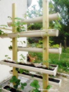 Diy cultiver des fraises en hauteur dans des gouttières | http://www.dededanssonjardin.com/2015/05/diy-cultiver-des-fraises-en-hauteur-dans-des-gouttieres/