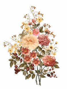Pastel Flowers, Botanical Flowers, Botanical Prints, Illustration Blume, Botanical Illustration, Victorian Flowers, Vintage Flowers, Pirate Map Tattoo, Texture Art
