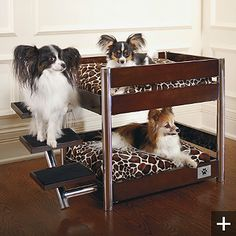 The Metropolitan Dog Bed Espresso  via Driven By Décor.  Had to pin this with Papillons involved.