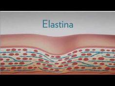 El único tratamiento que recupera la elastina de la piel