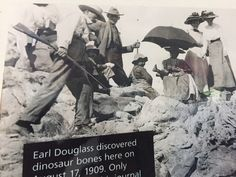 Dinosaur National Monument - The Piltdown hunt for the Missing Link was in an age of scientific exploration! Dinosaur Bones, Missing Link, Gilded Age, Historical Fiction, Natural History, Jay, Museum, Explore, Nature