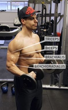 5 Must-Do Arm Exercises: Shock & Grow Your Biceps And Triceps.