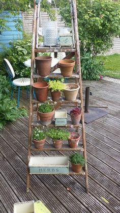Rustic garden ladder. I already have this but I love the idea of more pots on it