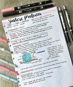 Biologia - Síntese Proteica. Estudaram bastante hoje? PARA MAIS RESUMOS : #resumosonhodamedicina Bullet Journal Font, Bullet Journal Aesthetic, Study Help, Study Tips, Medicine Notes, Mental Map, Study Pictures, Pretty Notes, School Notes