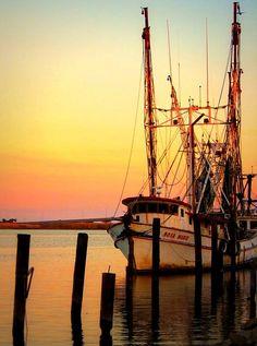 Shrimp boat ~ Forrest Gump shrimping memories in New Orleans, home Cline Doherty Shrimp Boat, Fishing Vessel, Boat Art, Boat Painting, Tug Boats, Tall Ships, Fishing Boats, Sailing Ships, Sunrise