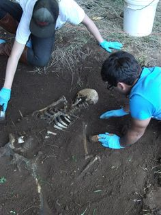 Digging up bones Forensic Psychology, Forensic Science, Medical Science, Forensic Anthropology, Biological Anthropology, Forensic Artist, Bodies Exhibit, Body Farm, All My Friends Are Dead