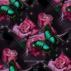 Animated Flowers and Butterflies   Butterfly Photos, Pictures and Butterfly Backgrounds 27 of 61