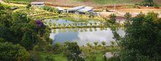 Respeite o meio ambiente como nós fazemos na BioExtratus!