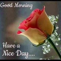 good morning - Raju Patel - Google+