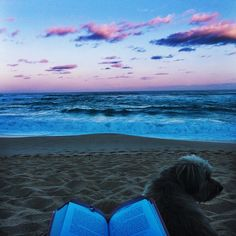 Calme face à l'océan,,,cooll <3 ..