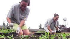 Sustainable Prison Rehabilitation Program Celebrates Years of Success