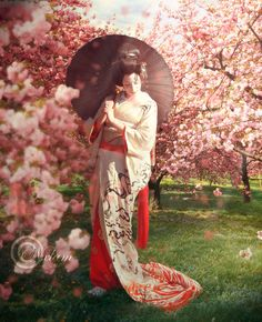 Cherry blossoms are beautiful back ground for her outfit. ....... Japanese kimono and cherry blossoms