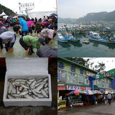 Festivais de Outono – Hongwon Port Jeoneo & Crab Festival