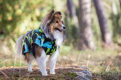 Rukka Raincoats, overalls, fleecewear, and knitwear for dogs Pet Clothes, Doggies, Raincoat, Spring Summer, Pets, Animals, Little Puppies, Rain Jacket, Animales