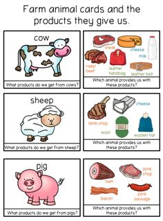 Information included: masculine and famine terminology collective nouns basic products from these animals cards can be Farm Animals Preschool, Farm Animal Crafts, Preschool Farm Theme, Farm Theme Crafts, Farm Activities, Animal Activities, Farm Lessons, Farm Unit, Collective Nouns
