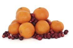 Cranberry Orange Yonanas