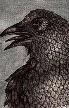 Original Raven / Crow / Bird / Animal Ink Art by LynnetteShelley,