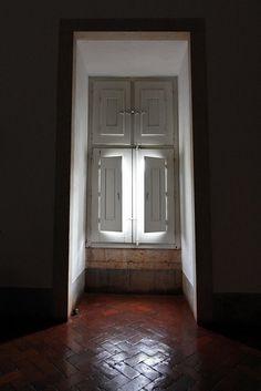 #Paisagem e #pormenores insondáveis. Apontamentos: Cortaderia - Planta invasora; Lugar do #Areínho - Oliveira do Douro; Convento de Mafra - Portugal