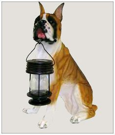 Solar Garden Dog with LED Lantern Light | Boxer