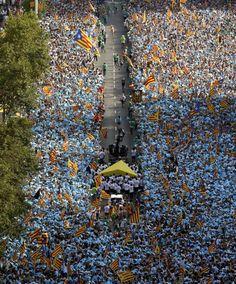 Cataluña 2015: La Diada en imágenes:la manifestación de la Vía Lliure. Meridiana llena de gente (1.400.000/2.000.000)  Barcelona  Catalonia