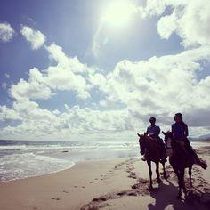 Sand or City Contest #SandorCity St Kitts Horseback riding through St. Kitts | #TravelBrilliantly