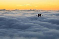 san Francisc... Bridge through fog :)