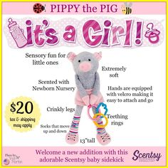 Meet Pippy the Pig our new Sidekick, comes scented with Newborn Nursery! Order yours today at www.smellarific.com.