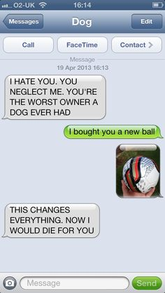 Funny how a dog's devotion hinges heavily on whether or not you're holding the ball - http://textfromdog.tumblr.com/