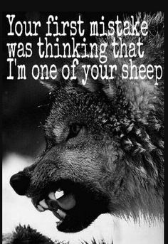 Wolf quotes and saying. The Wolf is a symbol of guardianship, instinct, loyalty, and spirit. The Wolf represents strong connection with instincts and intuition, high intelligence and communication – qualities we all should aspire to. Wisdom Quotes, True Quotes, Great Quotes, Words Quotes, Inspirational Quotes, Sayings, Motivational Quotes, Hd Quotes, Lone Wolf Quotes