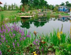 Concerned about the chemicals in chlorine? One elegant, eco-friendly solution is the so-called natural swimming pool. Check out these photos of some of the most gorgeous green pool designs around.