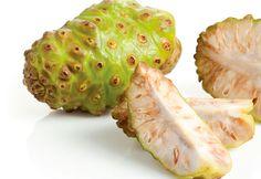 Conheça a fruta noni - GUIA A-Z - Viva Saúde
