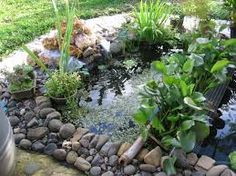 1000 images about estanques on pinterest search google for Estanques para peces en cemento