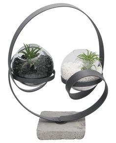 Abstract Yin Yang Zen Terrarium