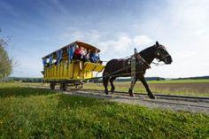Mit der Mühlviertler Pferdeeisenbahn das Granithochland entdecken ©OÖ. Tourismus/Röbl Museum, Horses, Animals, Family Vacations, Recovery, Tourism, Road Trip Destinations, Viajes, Animales