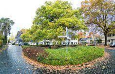 Neuer Wegweiser zu Gronaus verborgenen Schätzen -  Der Platz an der Eiche in der Gronauer Waldsiedlung in Bergisch Gladbach. Foto: Till Erdmenger – Businessfotos.