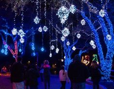9 Unforgettable Places to visit in TX this holiday seaon