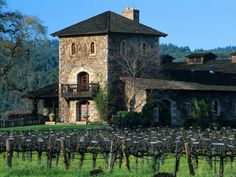 Napa Valley... wine country... in California