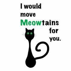 95 Best Cat Puns Images I Love Cats Cat Stuff Cats