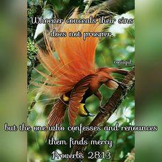 #Proverbs #Wisdom #Confession #Repentance #Forgiveness #Mercy #Grace #FaithfulGod #rosiigiil