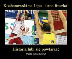 😅😍 Z wczora Volleyball Memes, Wtf Funny, Funny Animals, Mood, Baseball Cards, Humor, Funny Things, Sports, Polish