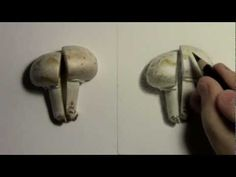 ▶ Realism Challenge #2: Mushroom - YouTube
