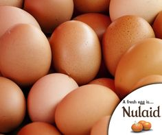 Eggs aren't just for breakfast. It's a dietary mainstay which is perfect to feed finicky kids and to stand in for a quick lunch or supper. It also provides us with the necessary protein we need. #Nulaid #eggs