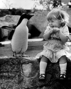 Precious #cute #adorable #animals