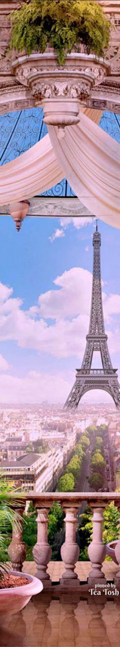 ❇Téa Tosh❇ Paris