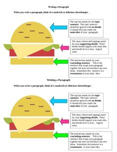 Paragraph Writing:  Sandwich Organizer Model - FREE!  Great resource for students - could be blown up into poster and laminated for a writing anchor